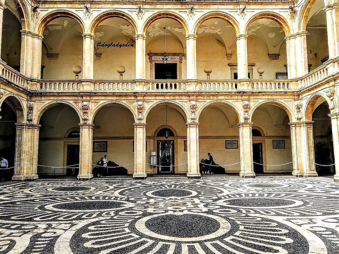 Today's #jj_community theme is #SYMMETRY at #jj_forum_2874      #dogladysden #traveladdict #photographer The inner courtyard of the University of Catania in Sicily. Dating back to the 15th century, it is Italy's oldest university.… http://dlvr.it/RZpjcPpic.twitter.com/uk0BfQHxfL