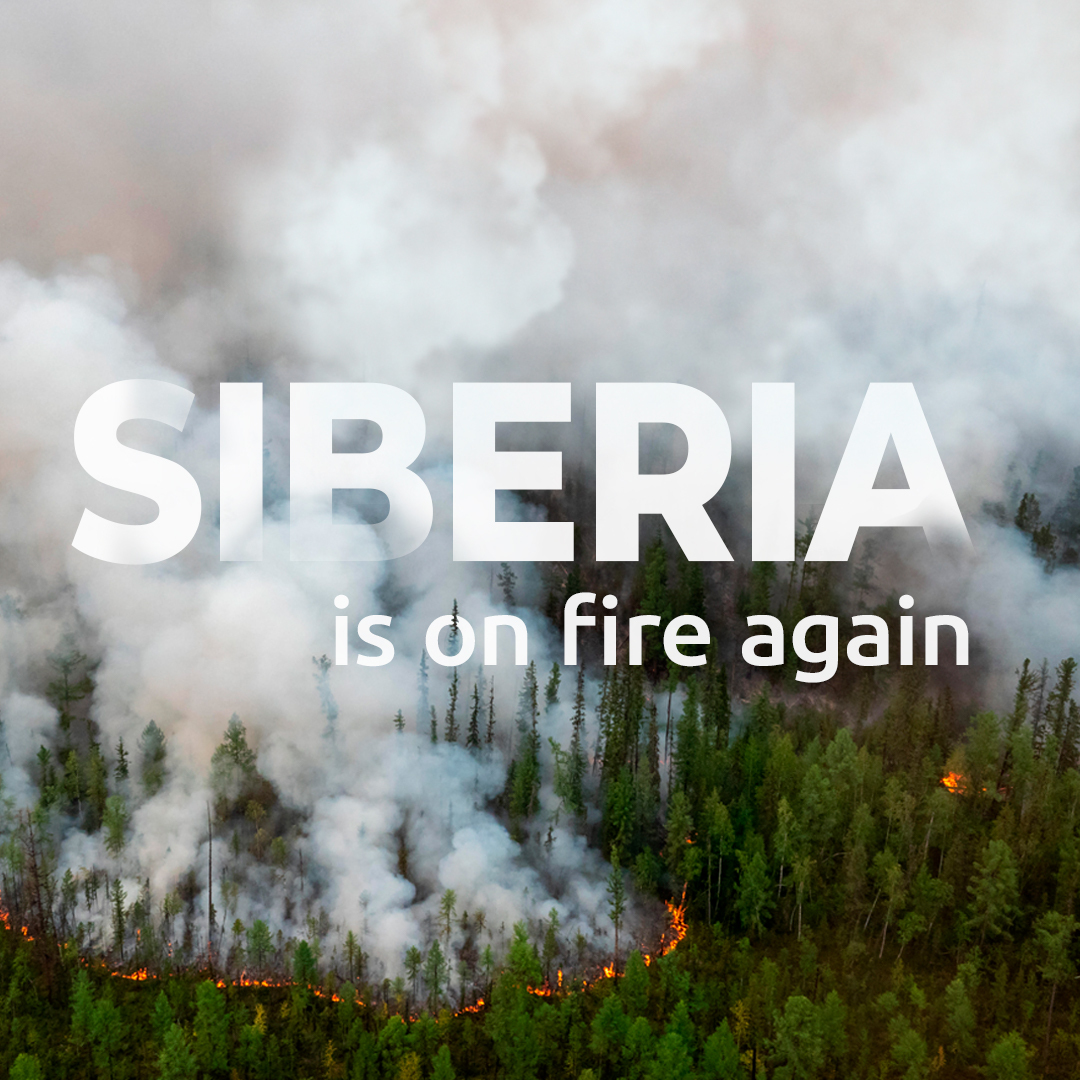 Catastrophic forest fires are happening again in Siberia and Far East Russia 🔥  More than 2 million hectares of precious forests are already on fire, an area the size of a country like Slovenia. Smoke may soon reach local cities and villages 😷  #ForestFires #ClimateEmergency https://t.co/Es1Ti0GnuD