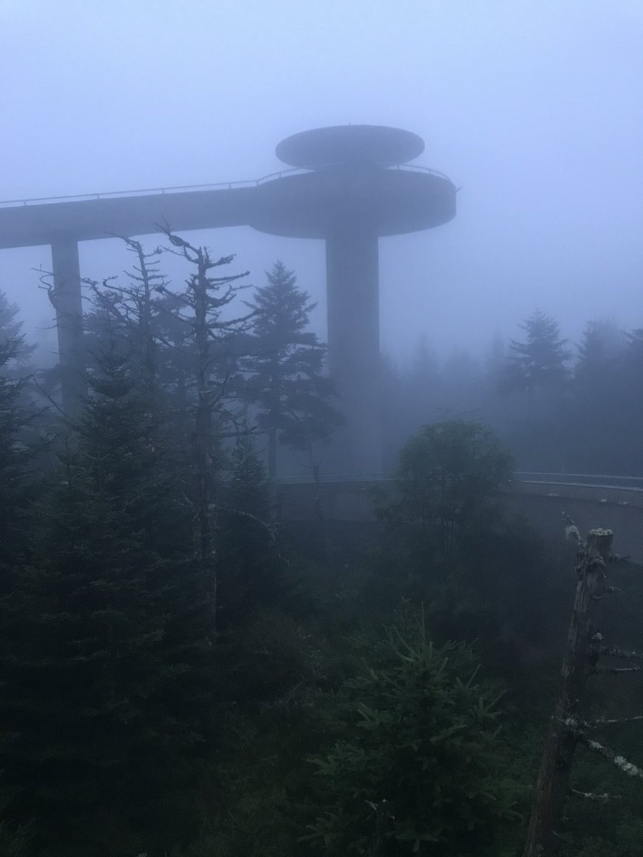 FACT 📍The #AppalachianTrail crosses #ClingmansDome at 6644ft  marks the highest point along its journey from Georgia to Maine. 🐻 . #fog #smokymountains #smokies #gsmnp #greatsmokymountains #greatsmokymountainsnationalpark #adventure #hike #explore #gooutside #hapeycabinrentals https://t.co/3s7KlUWlTE