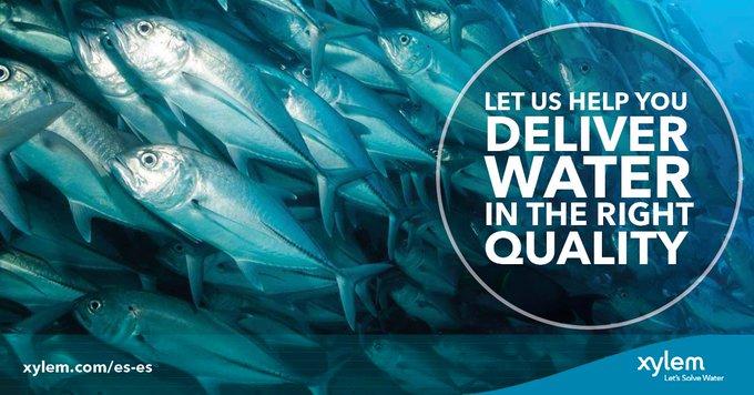 Arrancamos ya con Ozono para #acuicultura🐟🐟🐟🐟 Te unes? 16:00 #XylemWebinar https://t.co/5Y5JM39oVc  El uso de O3 en las inst. acuícolas mejora la ...