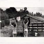 Image for the Tweet beginning: @AcklandArt 🏆Best Laundry Day Bum🏆  Burk