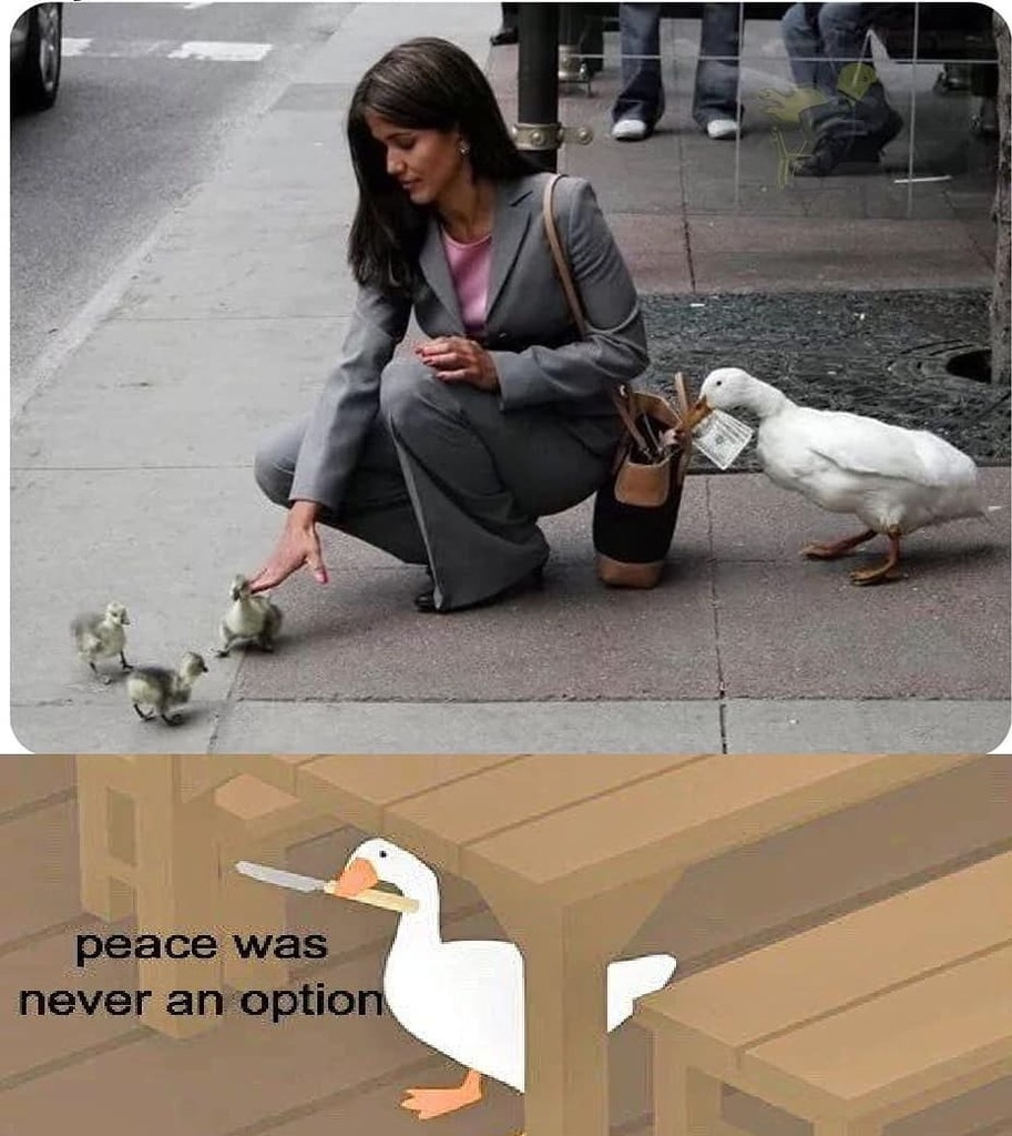 Goose strikes again. Like if you laughed! check out my meme merch, link in bio! @icebreaker_memes . . . . . #memes #meme #dank #funny #funnymemes #memesdaily #lmfao #comedy #weirdmemes #memess #memesdaily #funnymemes #dankmemes #edgymemes #offensivememes… https://instagr.am/p/CCJCnrwFYUQ/pic.twitter.com/BtnDNLIeXL