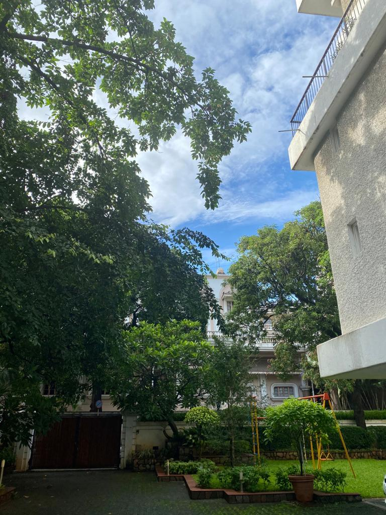 Guess where? In Mumbai...Blue skies... fluffy white clouds & Green earth 💙💚🌤️🌴🌍✨