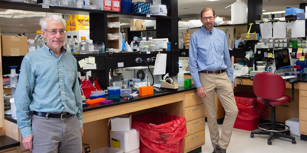 University of Iowa researchers have collaborated to develop a simple tool to help more researchers in the search for COVID-19 solutions. https://t.co/bwkxwtwdRo #UIowaResearch https://t.co/GeoSxyX2e2