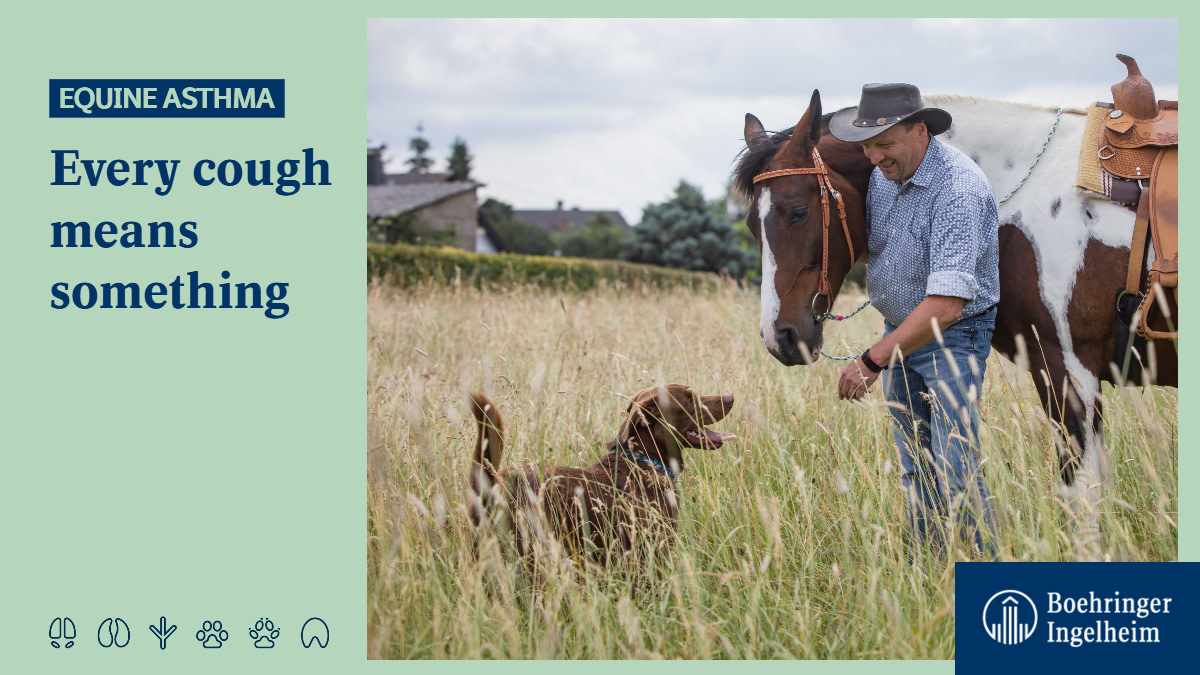 Signs of #EquineAsthma can be subtle, like the occasional cough. Click to find out more: ➡ https://t.co/SSzhIS3Mbs #horses #HorseRiding 🐎 https://t.co/fftEU3FflX