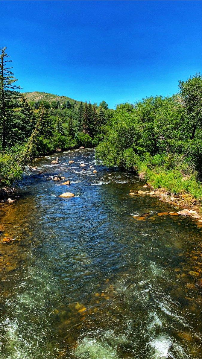 Summer in Colorado 👀