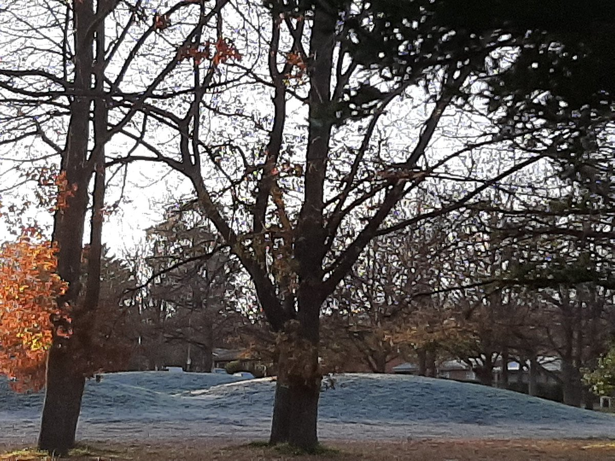 Frosty covered grass on an #autumn morning in #CBR #Canberrapic.twitter.com/9yKECCOOPs