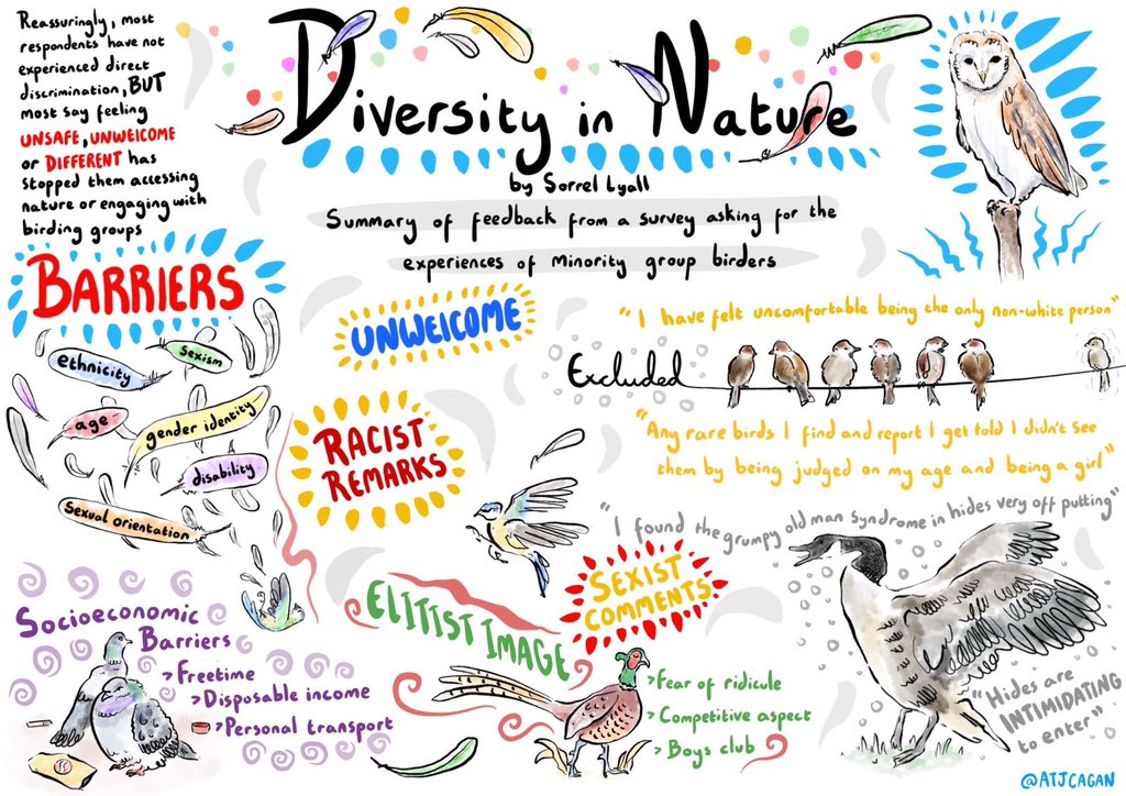 Proud to illustrate the results of a survey by @SorrelLyall looking into the experiences of minority groups in nature and #birding. The challenges and potential solutions so that everyone can enjoy nature #scicomm @Natures_Voice @RSPBScotland @BBCSpringwatch @ChrisGPackham