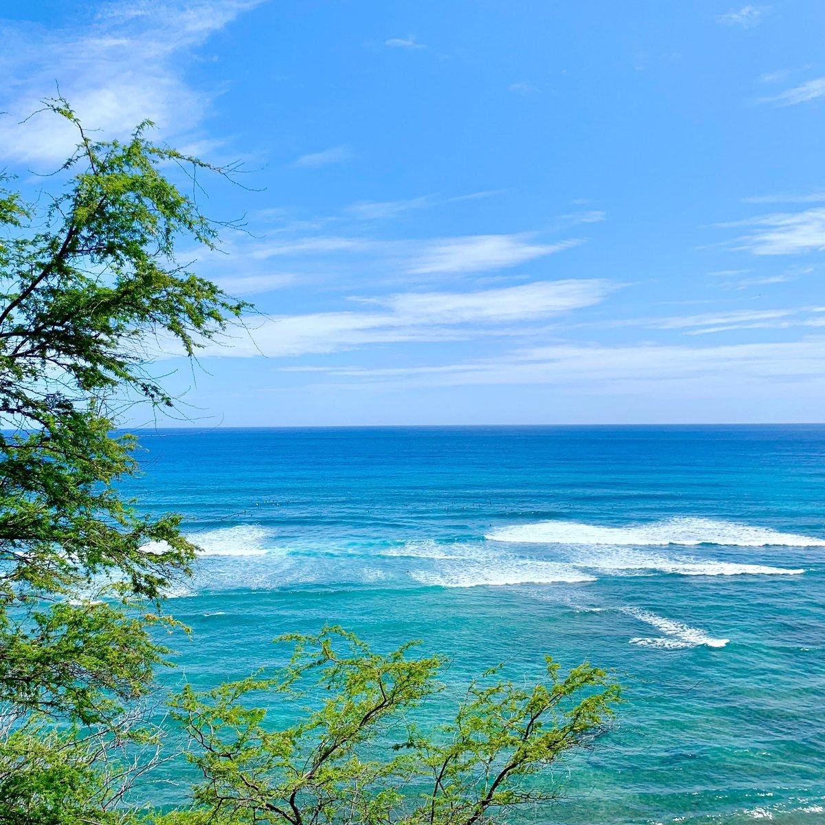Ocean Blue💙💙💙  #summer #oceanblue #diamondheadbeach #hawaiilife #hawaii #hilife #lovehawaii #surf #surfing #surflife #beachlife #beachday #beachlover #beachgirl #aloha #luckywelivehawaii #ハワイの海 #サーフィン #ハワイ #ビーチライフ #ハワイライフ #ハワイ暮らし #海のある生活 https://t.co/F7n3vKiKV2