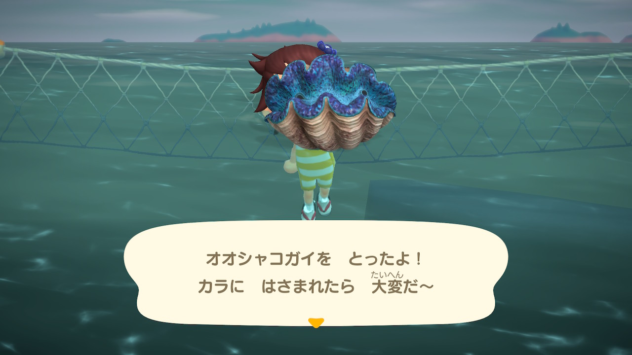 森 値段 あつ 貝 の