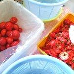 トマトは冷凍保存ができる!凍ったままそうめんの上にすりおろして食べよう!