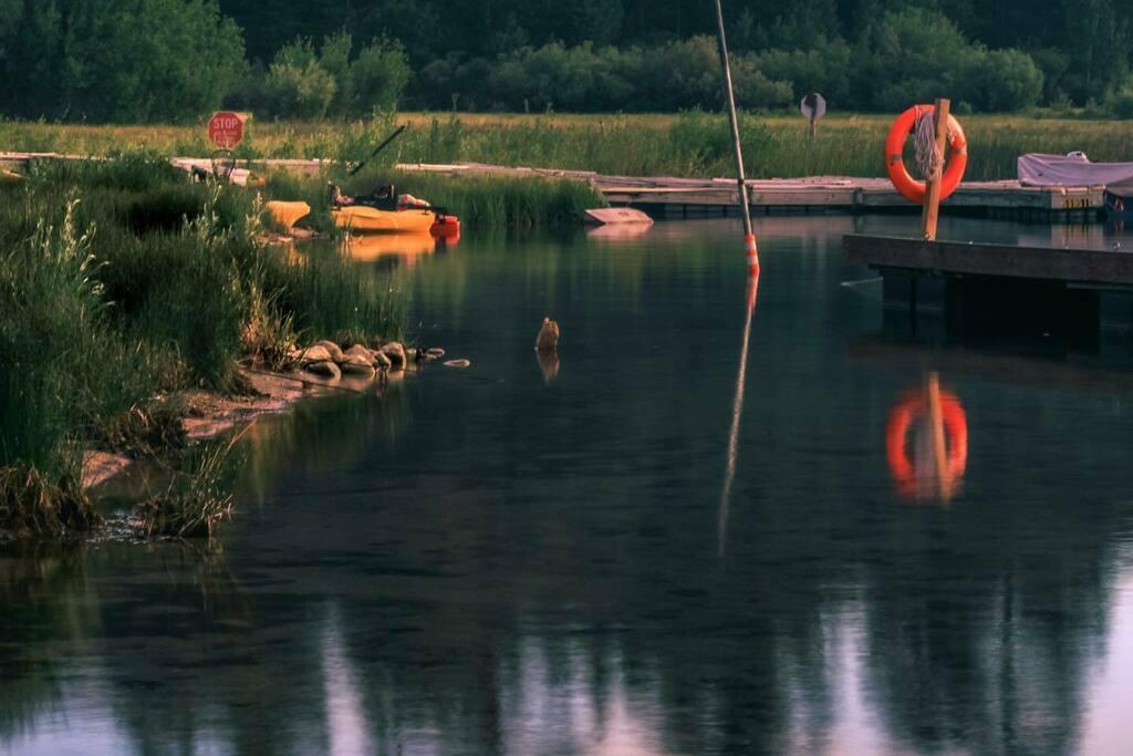 #junelake #junelakeloop #junelakemarina #boats #lake #camping #campinglife #tentcamping #canon #canonphoto #canonphotography #canonusa #instagood #mytravelgram #nature #nature_perfection #naturecapture #naturegood #naturelovers #naturephotography #nature… https://instagr.am/p/CCJ8UdIl8hG/pic.twitter.com/L4QoL1W4fg