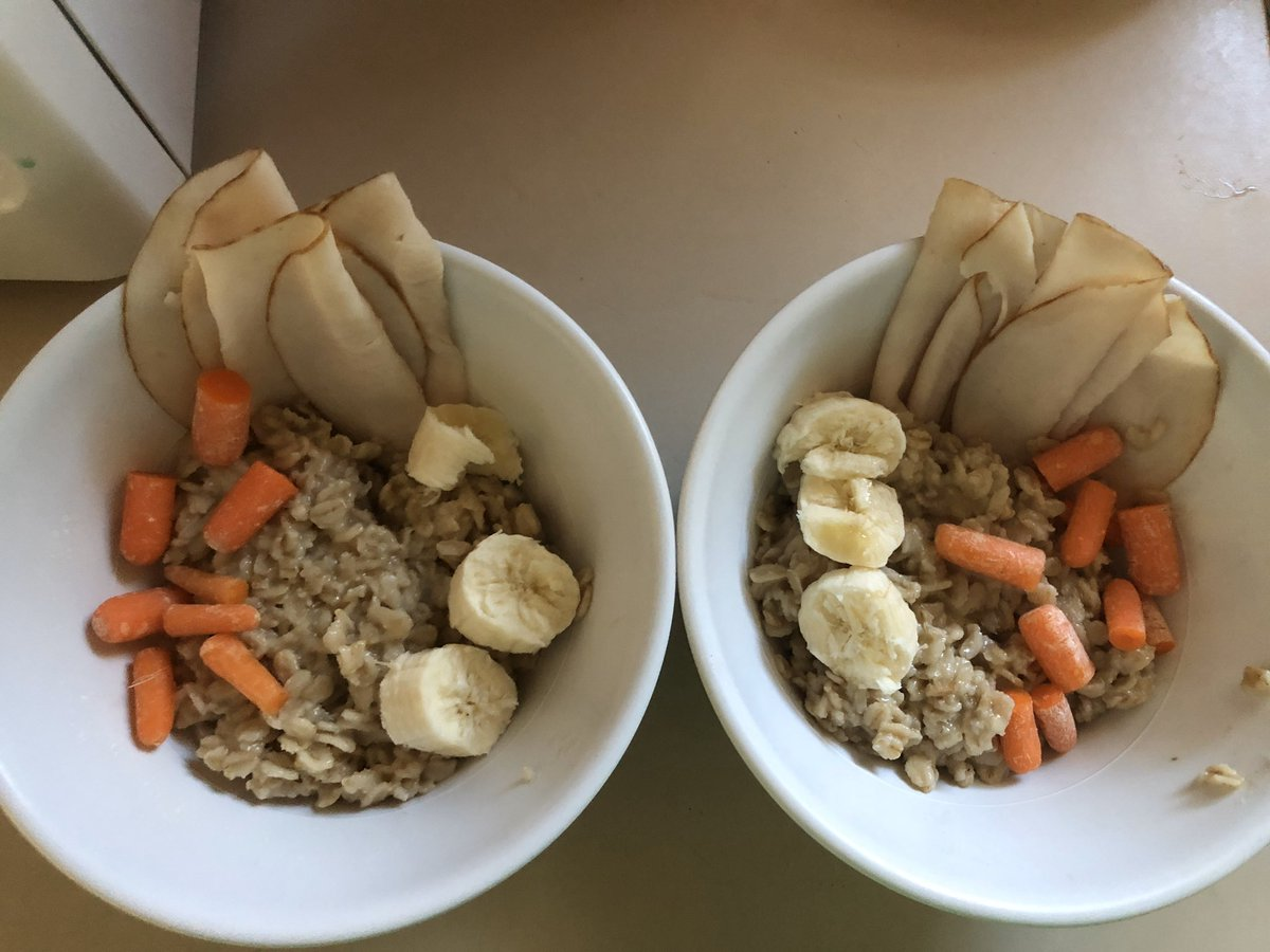 My doggies tummies were upset so I made them oatmeal with their favorite treats pic.twitter.com/j1gScBOQmi