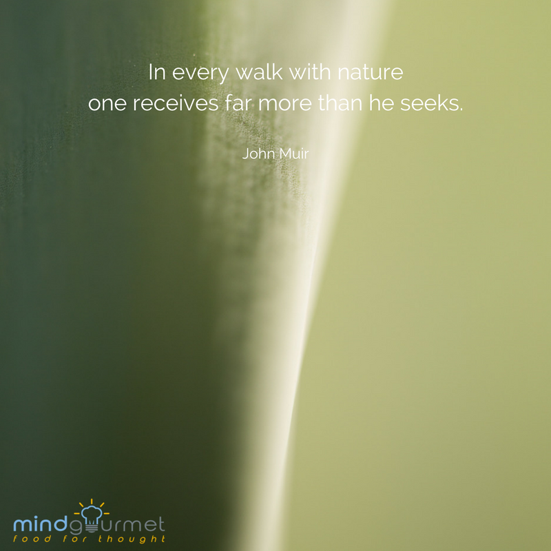 In every walk with nature one receives far more than he seeks. - John Muir #JohnMuir #nature mindgourmet.com/catch-of-the-d…