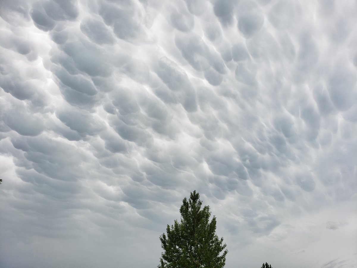 Mammatus clouds over Minot AFB, ND currently. #stormchasing @ReedTimmerAccu @RadarOmega_WX<br>http://pic.twitter.com/deoBLNi6NN