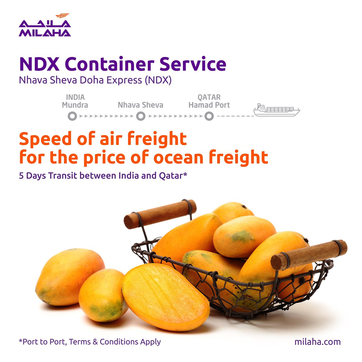 Milaha's container services provide unbeatable transit times between West Coast of India and Qatar, with further connections to the GCC countries. For container bookings, register with us at milaha.com/servicerequest/ #Container #shipping #India #Qatar