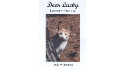 "• ""Dear Lucky."" The Life & Times of Lucky the Cat. Color Action Photos by Brenda Perrott WIlliamson + New Orleans' Story, ""Cookie & the Chicken."" Katzenworld Review: ""A little gem of cat stories."" #CatBooks. ;"