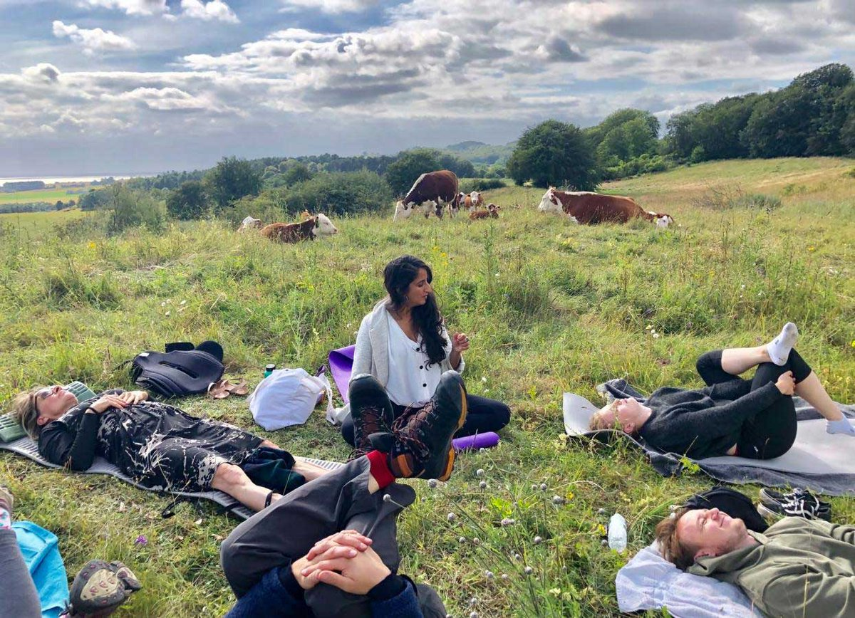 Happy international #yoga day 🙏 Enjoy a day of spiritual, mental and physical practices that will bring you inner peace. Here in #Denmark, you can even do yoga outside on a field amongst cows 🐄🧘♀️  #namaste  How to truly relax in Denmark ✨👇  https://t.co/iPGeQm4ILW https://t.co/FAjcc1woHV