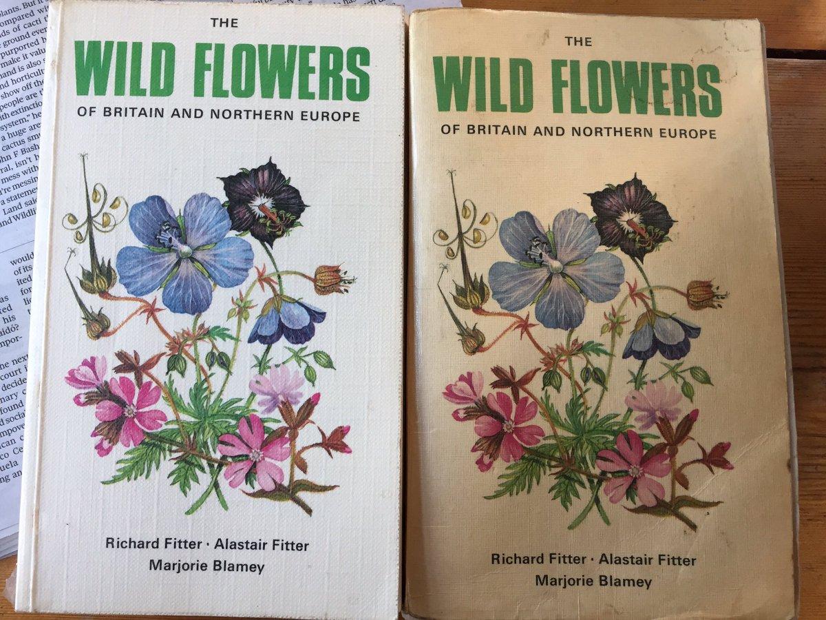 @wildflower_hour forgot to include photo #wildflowerhour