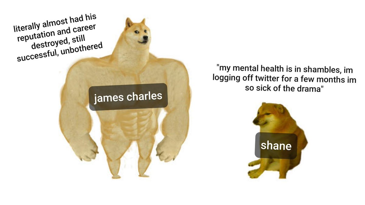 My sister and I have been getting caught up on the Shane / Jeffree / James Charles drama all morning so I made this meme for her #ShaneXJeffree #shanedawson #jamescharles #jeffreestar