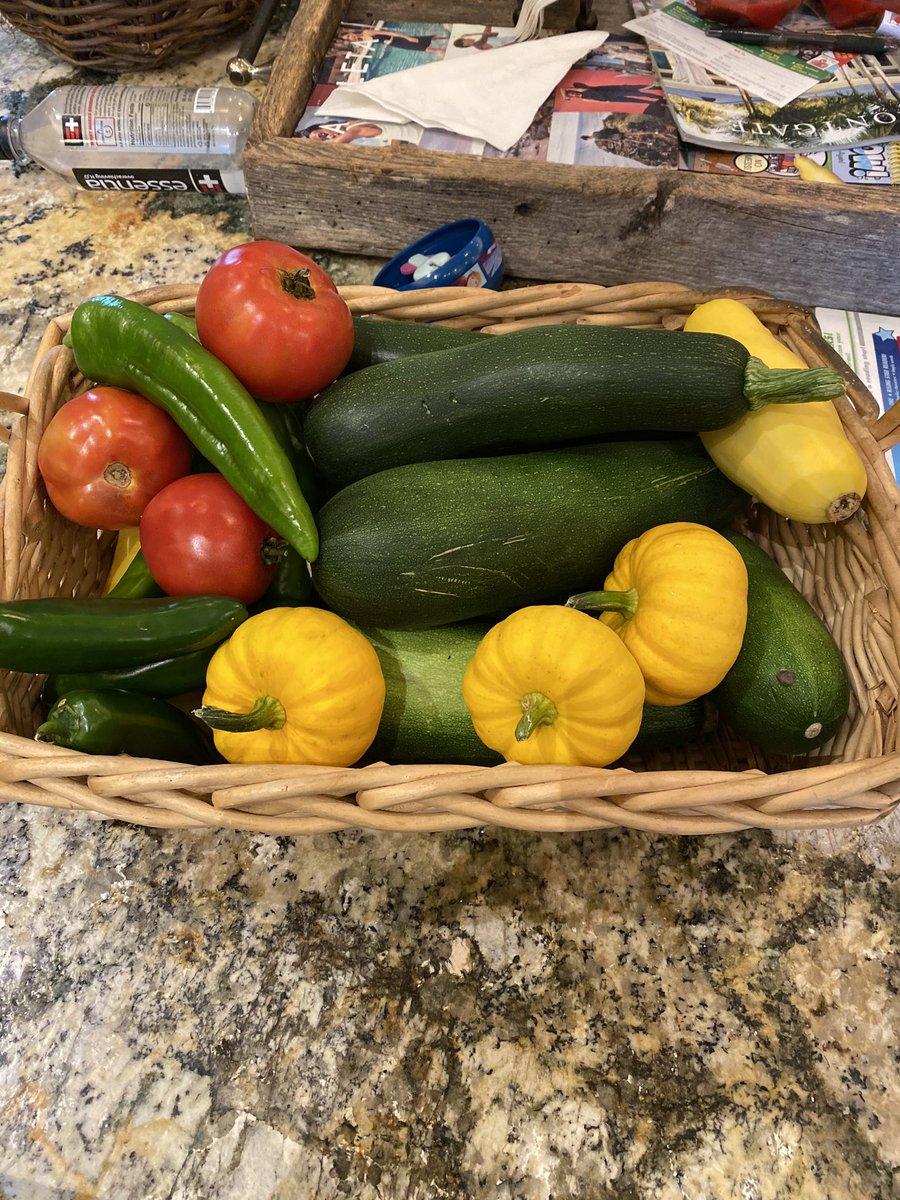 First haul from the Jones Family Quarantine garden!