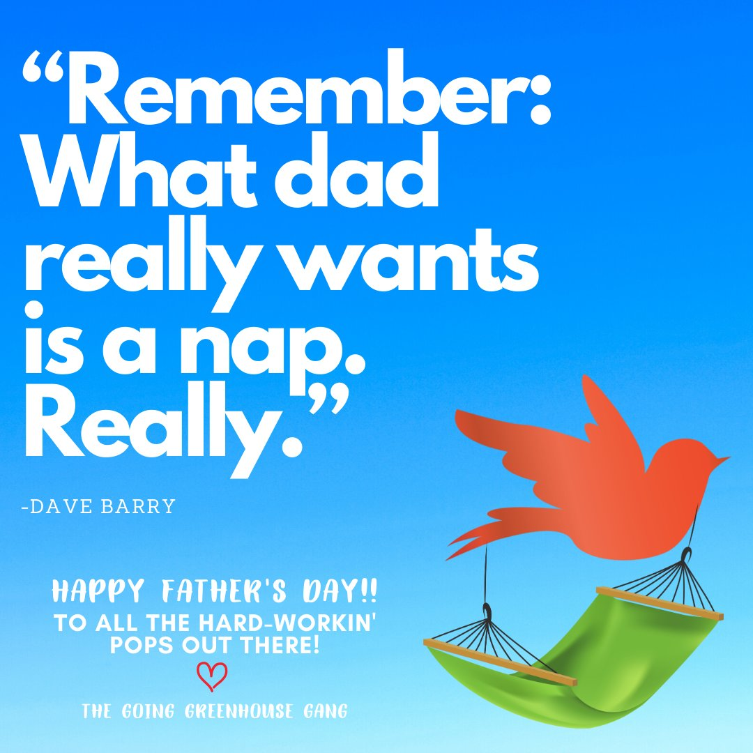 Let dear ol' dad have his dang nap today 😜 😴   #fathersday #napgamestrong #smallbusinessstrong #goinggreenhouse #greenhousecleaning #az https://t.co/CK7krdt08m