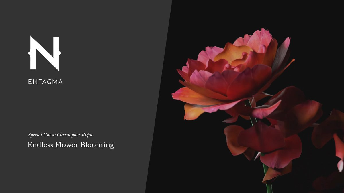 It's guest tutorial time! We're thrilled to have @chriskopic  join us to explain how he created a looping flower petal animation in @sidefx #Houdini using #vellum Now on: https://t.co/UVYNBcLoD5 https://t.co/szjfq6RFtm