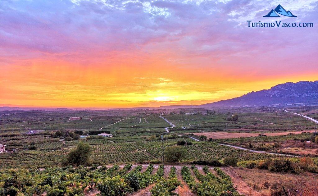 ¿Preparando tu #roadtrip entre viñedos por #RiojaAlavesa para este verano?  ¡Descúbrela recorriendo villa tras villa!  (vía @turismo_vasco )  👉 https://t.co/i6CGf30jMf https://t.co/CbCckUzejO