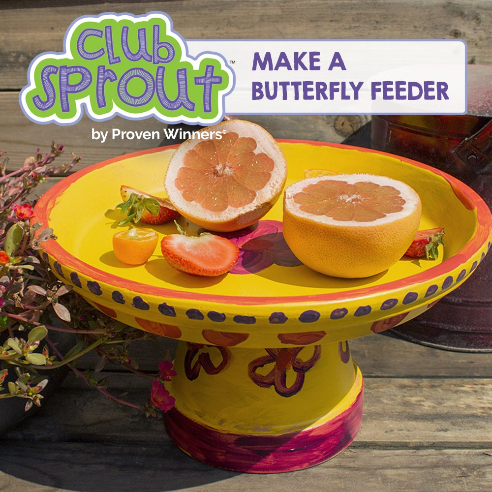 It's #NationalPollinatorWeek !!  Since we're expecting a rainy afternoon, here's a great indoor project for the kids!!!  #clubsprout #ProvenWinnerspic.twitter.com/DqMrHzibfV