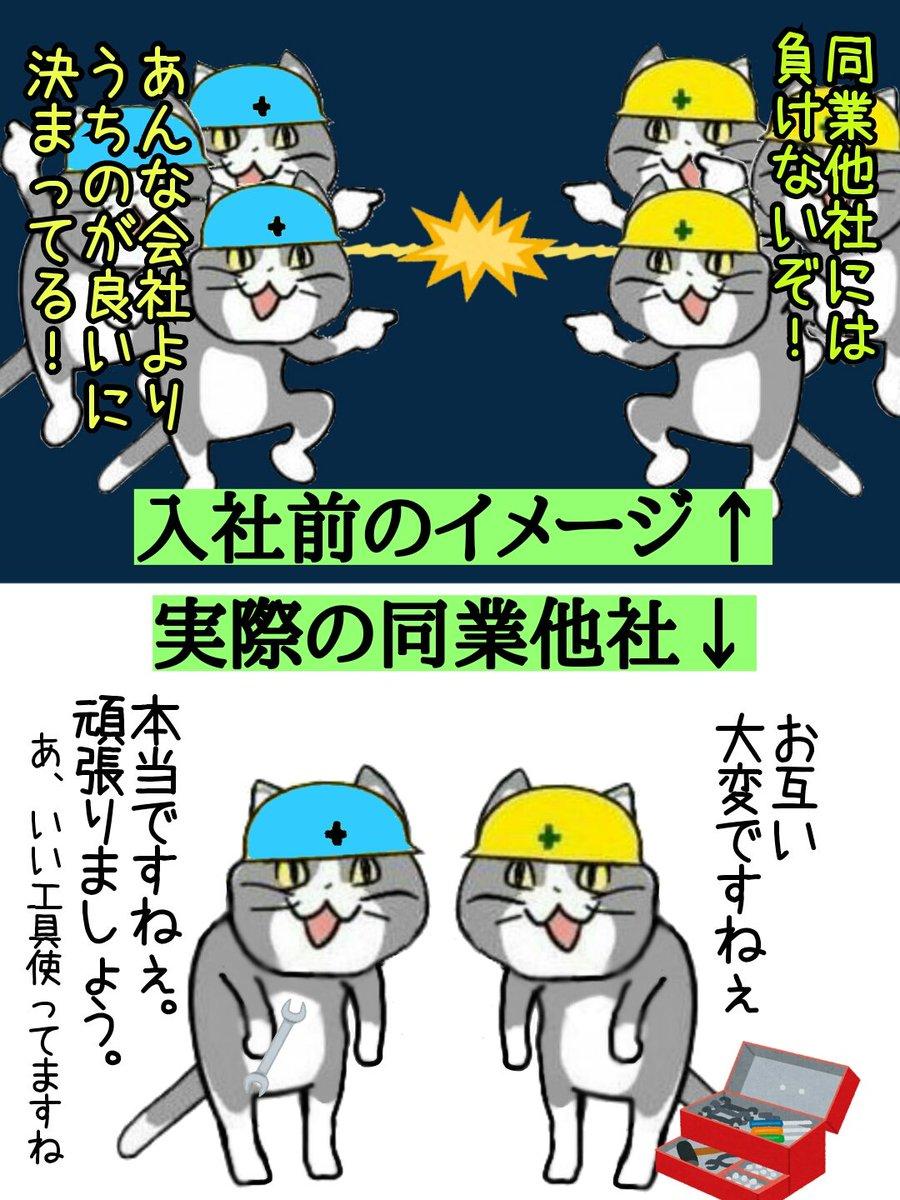 """からあげのるつぼ on Twitter: """"同業他社は言うほど争ってない #現場猫… """""""
