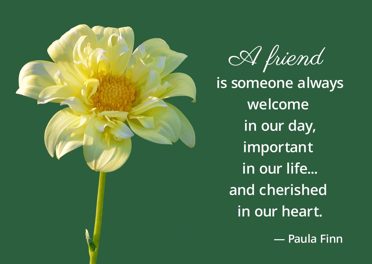 A friend is someone always welcome in our day, important in our life… and cherished in our heart. ~ Paula Finn @QuoteILoveU #inspirational #quote #friend #friendship #friend #welcome #cherished #heart #life #lifequotes #yellowflower #ourday