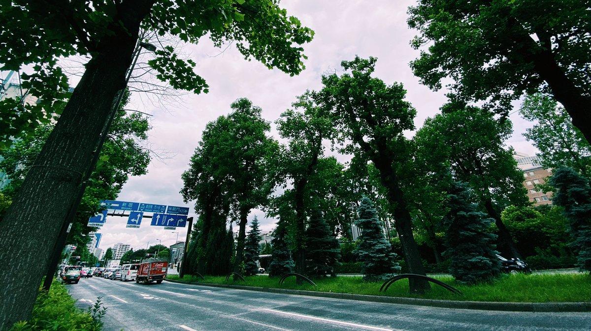 緑あふれてて良さしかない #四谷見附 https://t.co/CIALqFbNCl