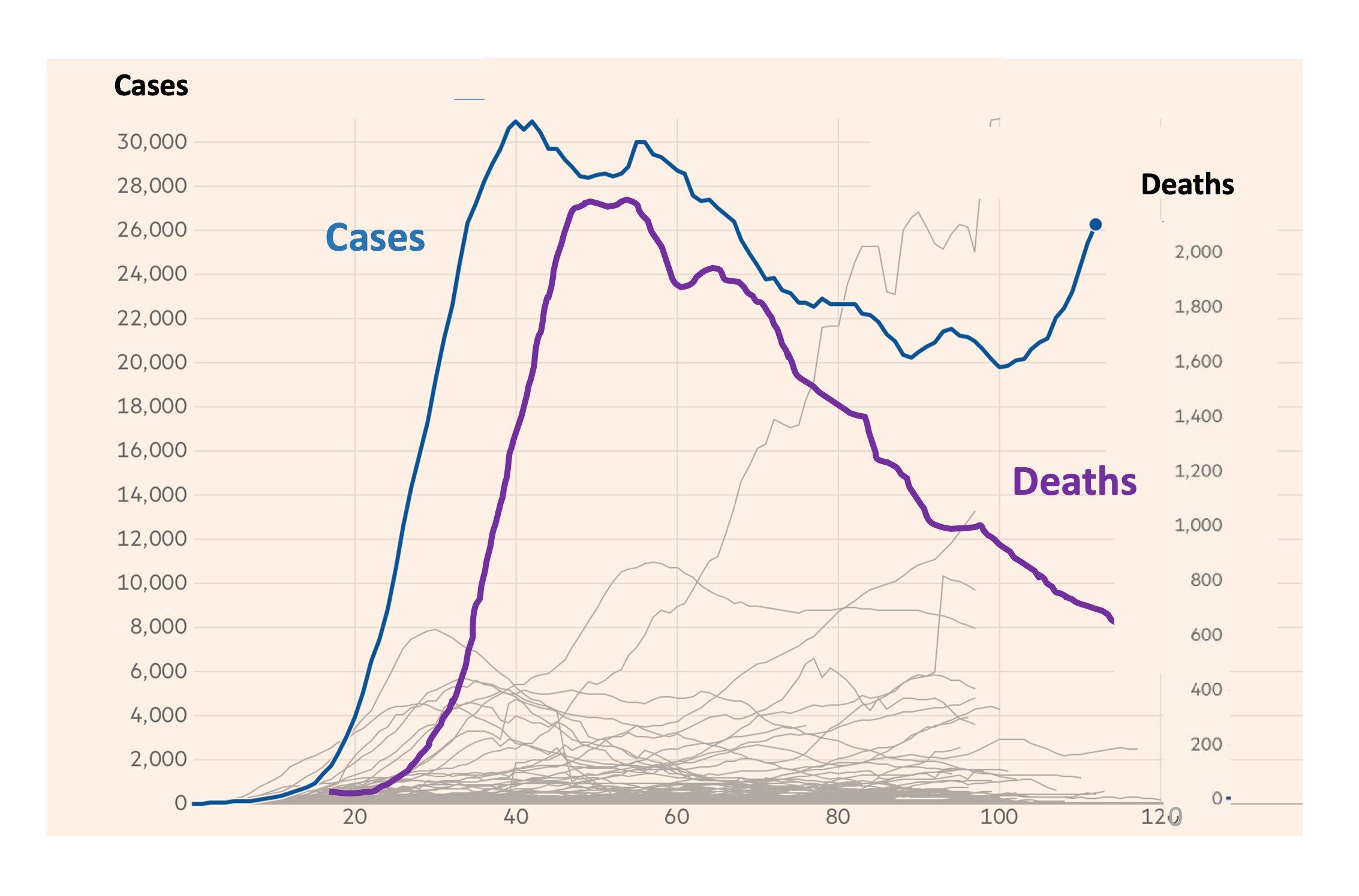 Coronavirus Deaths Plummeting