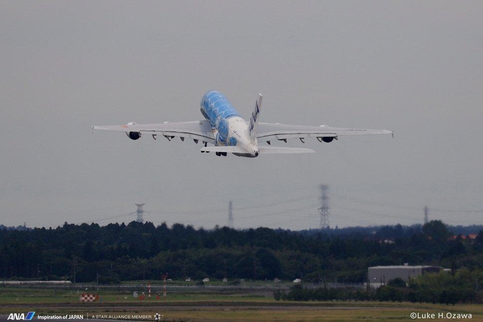 \A380整備フライト/ 昨日の2号機に続き、本日はHonu1号機がメンテナンス飛行を行いました✨今日は南風だったためRWY16Rから離陸し、約40分の飛行をしたのち、RWY16Rに着陸🛬 また沢山の笑顔を乗せて日本とハワイの空を繋ぐ日まで日々準備しています✈️ #a380 #FLYINGHONU #ふたたび大空を飛ぶために