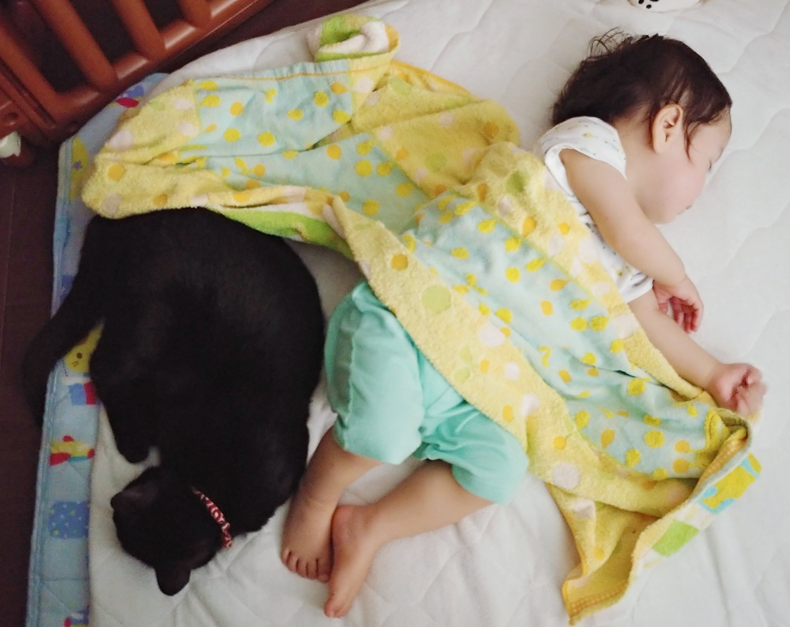 赤ちゃんと黒猫が仲良く寝ている光景!ほのぼの!!