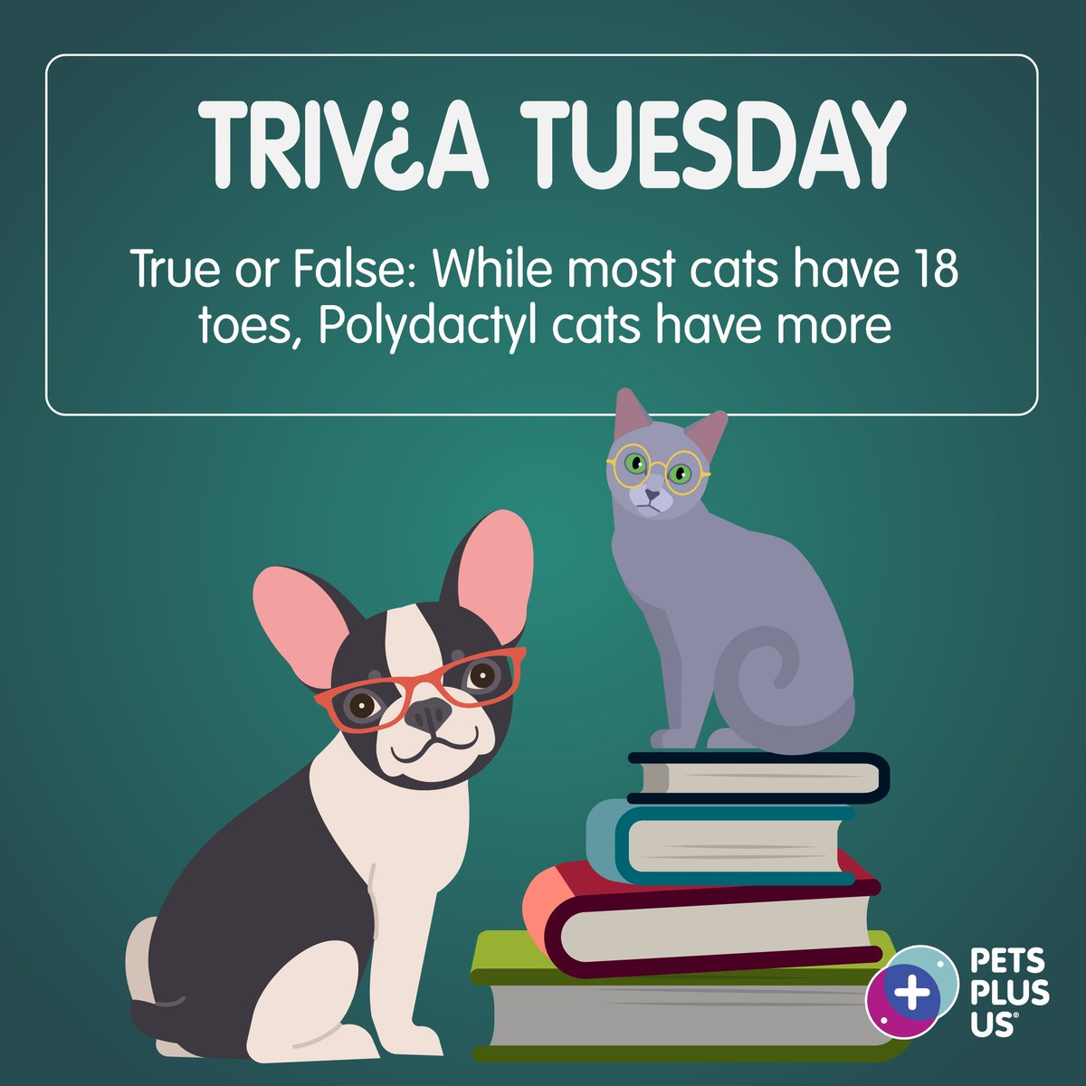 #Win a $25 PetSmart GC! Answer the question & RT to enter our #TriviaTuesday Giveaway. Open to CND residents only. Contest ends at 11:59PM EST. Note, this contest is in no way sponsored, endorsed or administered by, or associated with, Facebook, Instagram and/or Twitter. https://t.co/9gPftFpqJG