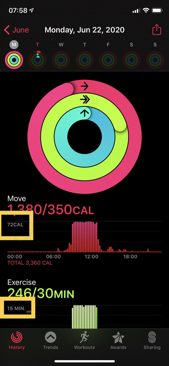 Apple Watch geniuses ... what do the bombers in the yellow boxes represent? #applewatch #activityreport #calories #time https://t.co/jCcGAWpuIa