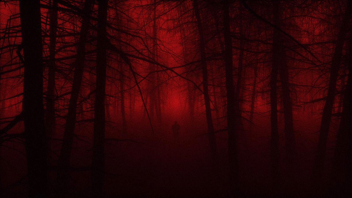 Take me away into the trees I dread the sun to rise Bury me so the night will never end #doomwoods  06.25.2020 https://t.co/AeOXBwfMi1
