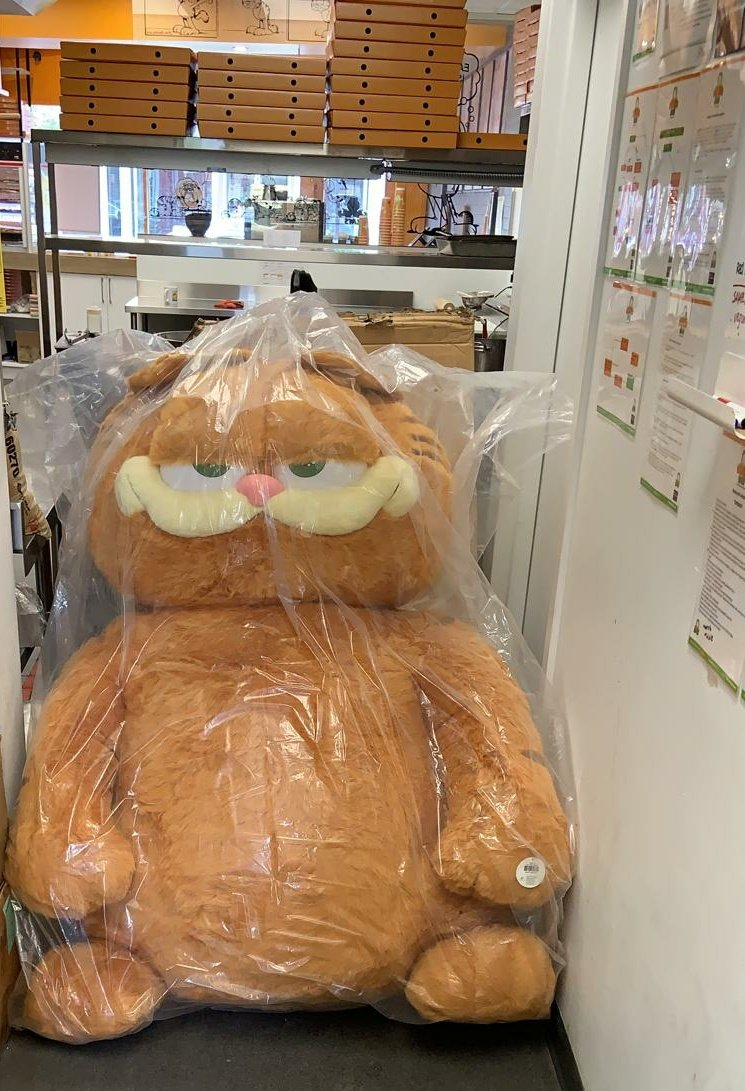 Garfieldeats On Twitter Thank You Walt Disney 20th Century Fox For The Biggest Garfield Plush In The World Only 7 In The World And Garfieldeats Now Owns Them All Just
