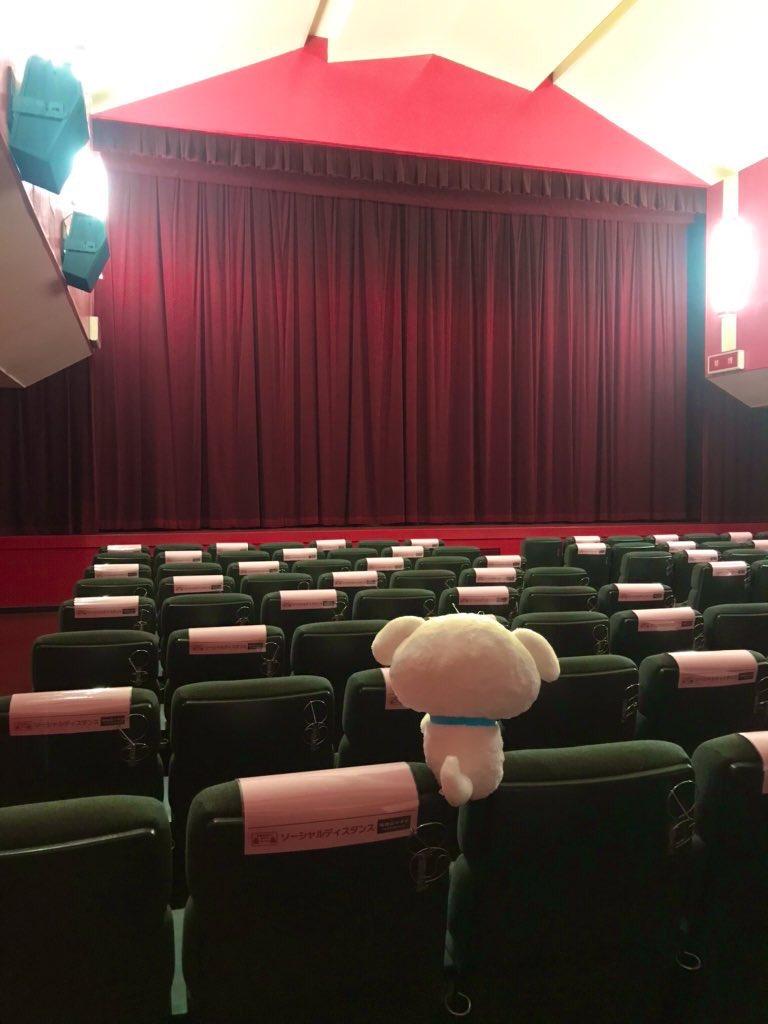 福知山シネマ On Twitter Save Our Local Cinemas 関西劇場応援tシャツ 劇場窓口限定のシロver 追加発注分 入荷いたしました ご予約もたくさんいただき ありがとうございます 感謝の気持ちでいっぱいです 各サイズ 店頭で販売中です 福知山