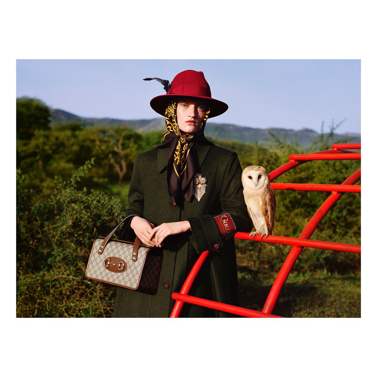 #AlessandroMichele による #GucciPreFall20 コレクションの広告キャンペーン #SoDeerToMe には、美しい自然の風景や、動物、子どもの頃に遊んだ遊具が登場します。 詳しくは https://t.co/S3XDXG1ri7 https://t.co/VGlCBS7AHJ