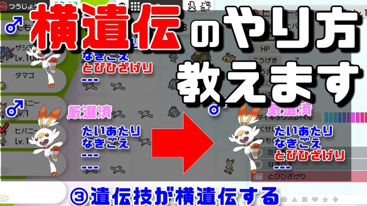 一覧 ポケモン剣盾 タマゴ技