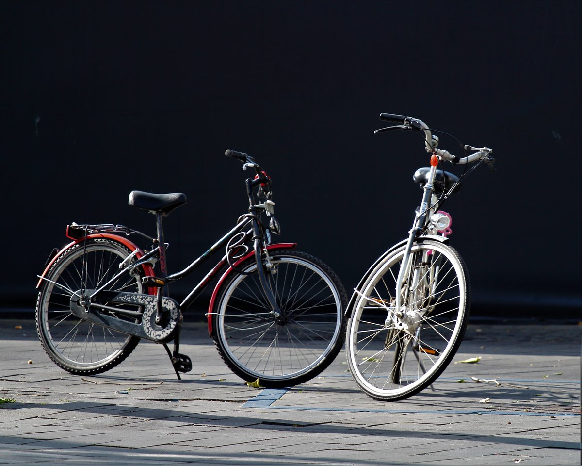 There are over 1 billion bicycles currently being used all around the world. Bicycles save over 238 million gallons of gas every year. #worldbicycleday #ridebikes https://t.co/RmmPWmTVex