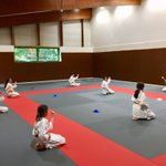 Image for the Tweet beginning: Le karaté à l'@AsMeudonKarate en