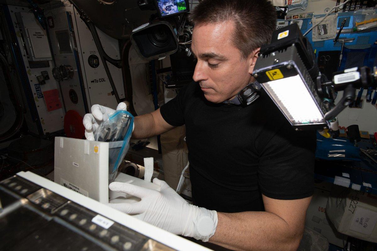 Las investigaciones científicas de la semana pasada a bordo de la @Space_Station incluyeron estudios sobre flujos capilares en pequeños dispositivos y demostraciones de imágenes fluorescentes de proteínas de plantas y levaduras. Aprende más: go.nasa.gov/2NtBPZS