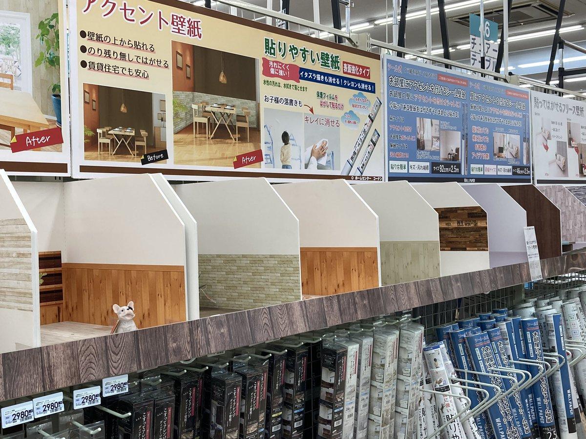 Lipu Co Chang Booth通販中 W コーナンの壁紙コーナーがぬい撮りスペースっぽかった W