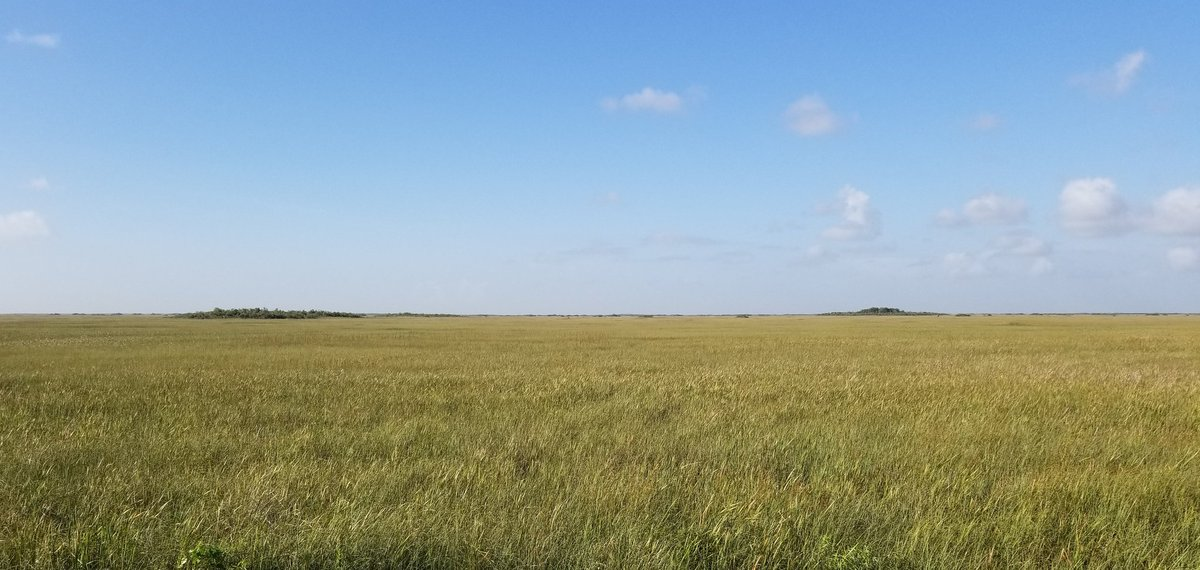 Scene from Tamiami Trail in Everglades National Park