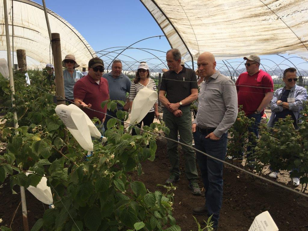 TBT to last April and the amazing faculty/staff field trip to Driscoll's headquarters in California. An incredible learning experience for the CIA team. Thanks @driscollsberry #FinestBerries https://t.co/h1rRWKGuTS