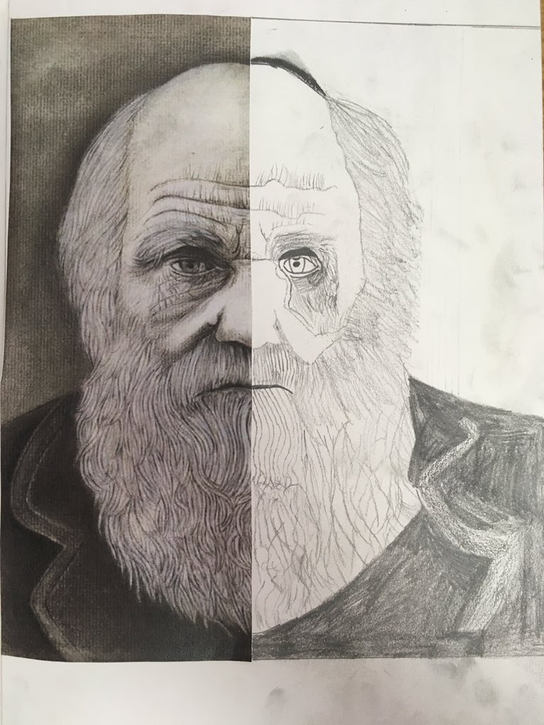 This afternoon, children from Year 6 have been making stunning artwork linked to their science studies on Charles Darwin 🎨