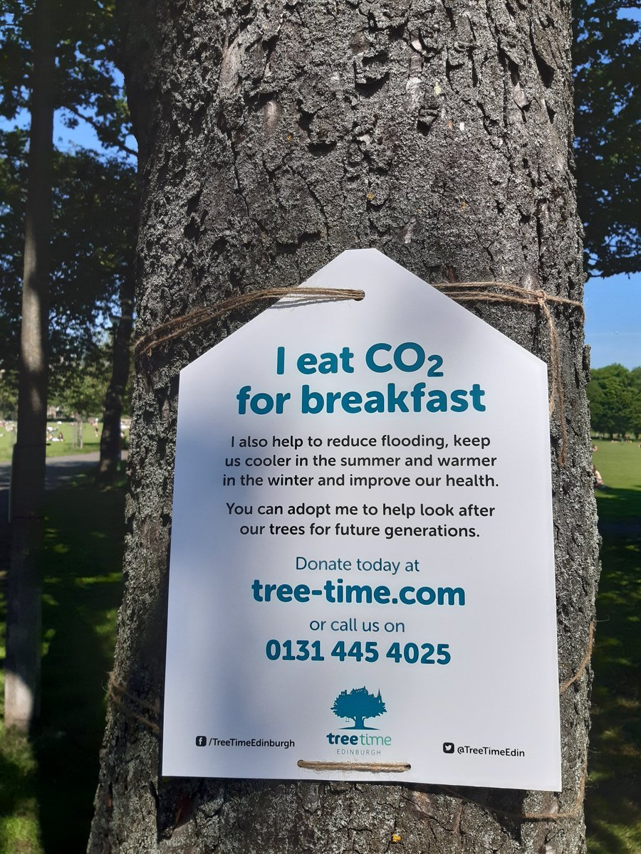 Still lots of opportunity to adopt trees in Edinburgh as part of tree time https://t.co/nD2U29fS5l #themeadows, #bruntsfieldlinks, #hermitageofbraid